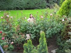 jardin florecido